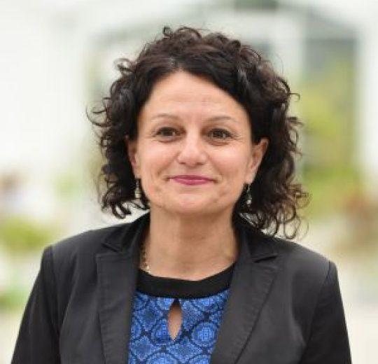 Prof. univ. dr. Carmen NASTASE