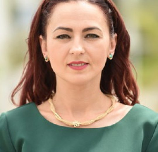 Lect. univ. dr. Ruxandra BEJINARU